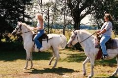 horseback_100